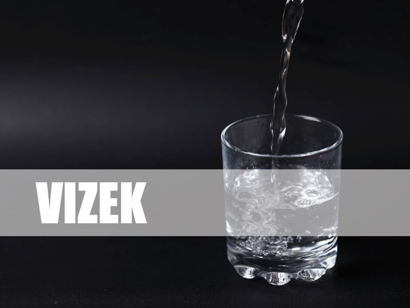 Vizek